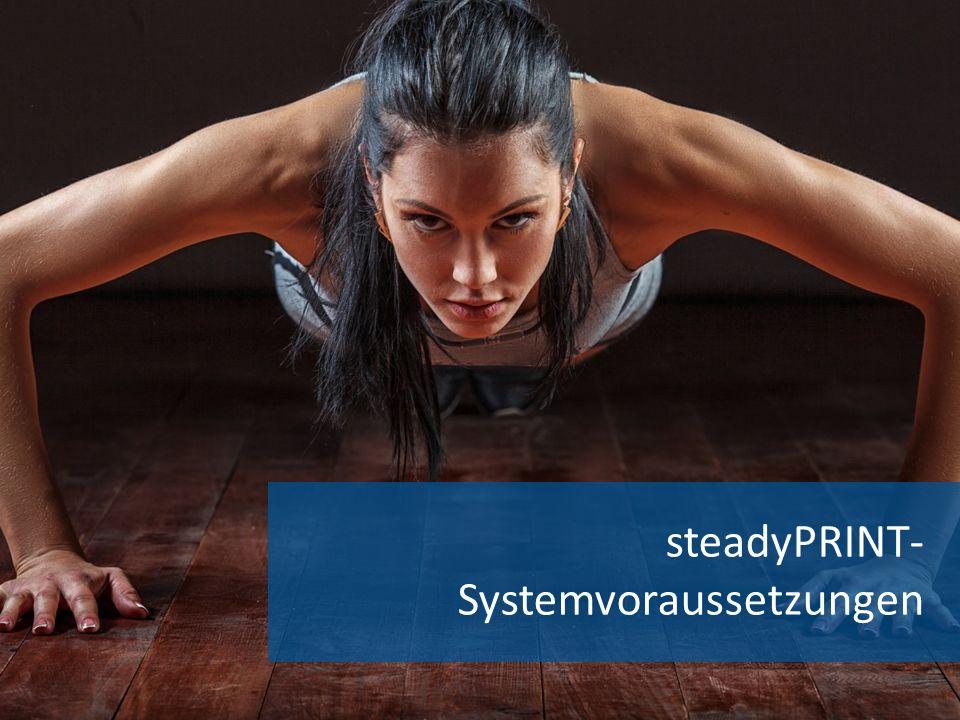 steadyPRINT- Systemvoraussetzungen