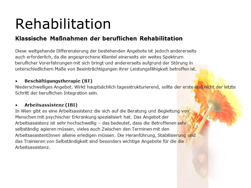 Rehabilitation Klassische Maßnahmen der beruflichen Rehabilitation Diese weitgehende Differenzierung der bestehenden Angebote ist jedoch andererseits