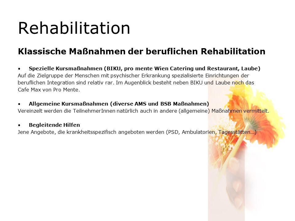 Rehabilitation Klassische Maßnahmen der beruflichen Rehabilitation Spezielle Kursmaßnahmen (BIKU, pro mente Wien Catering und Restaurant, Laube) Auf die Zielgruppe der Menschen mit psychischer Erkrankung spezialisierte Einrichtungen der beruflichen Integration sind relativ rar.