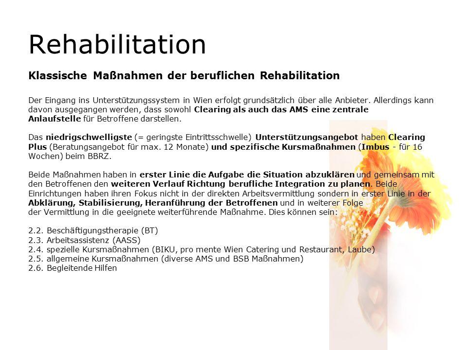 Rehabilitation Klassische Maßnahmen der beruflichen Rehabilitation Der Eingang ins Unterstützungssystem in Wien erfolgt grundsätzlich über alle Anbieter.