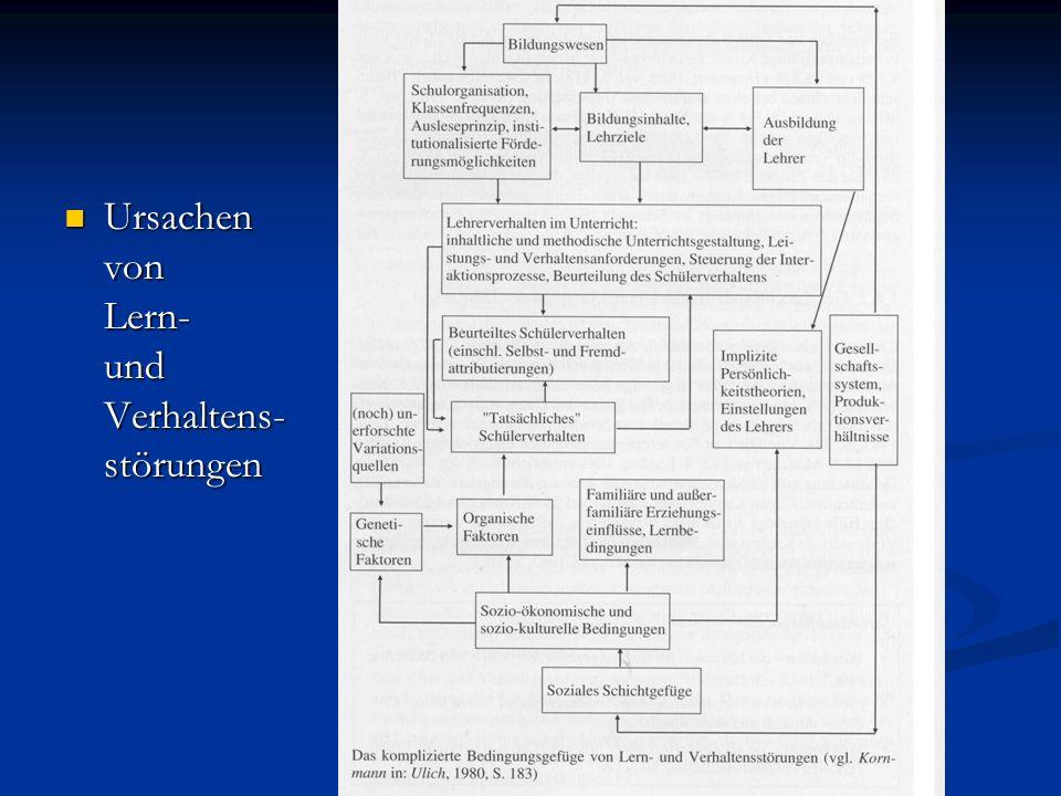 Ursachen von Lern- und Verhaltens- störungen Ursachen von Lern- und Verhaltens- störungen