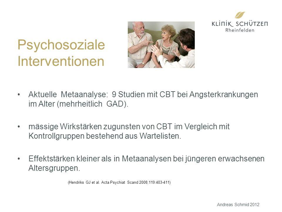 Aktuelle Metaanalyse: 9 Studien mit CBT bei Angsterkrankungen im Alter (mehrheitlich GAD).