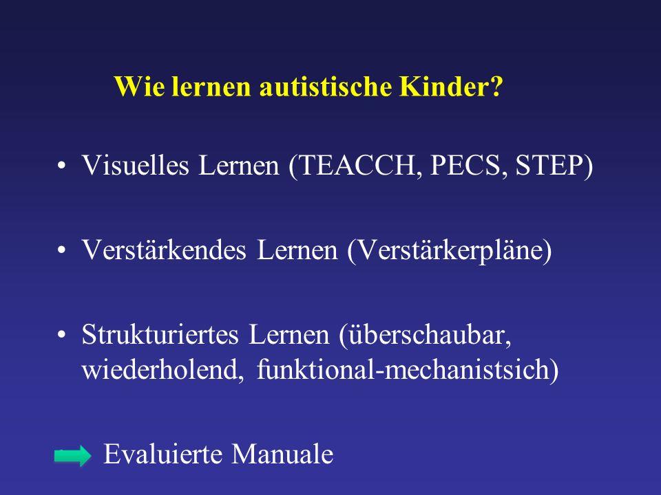Wie lernen autistische Kinder.