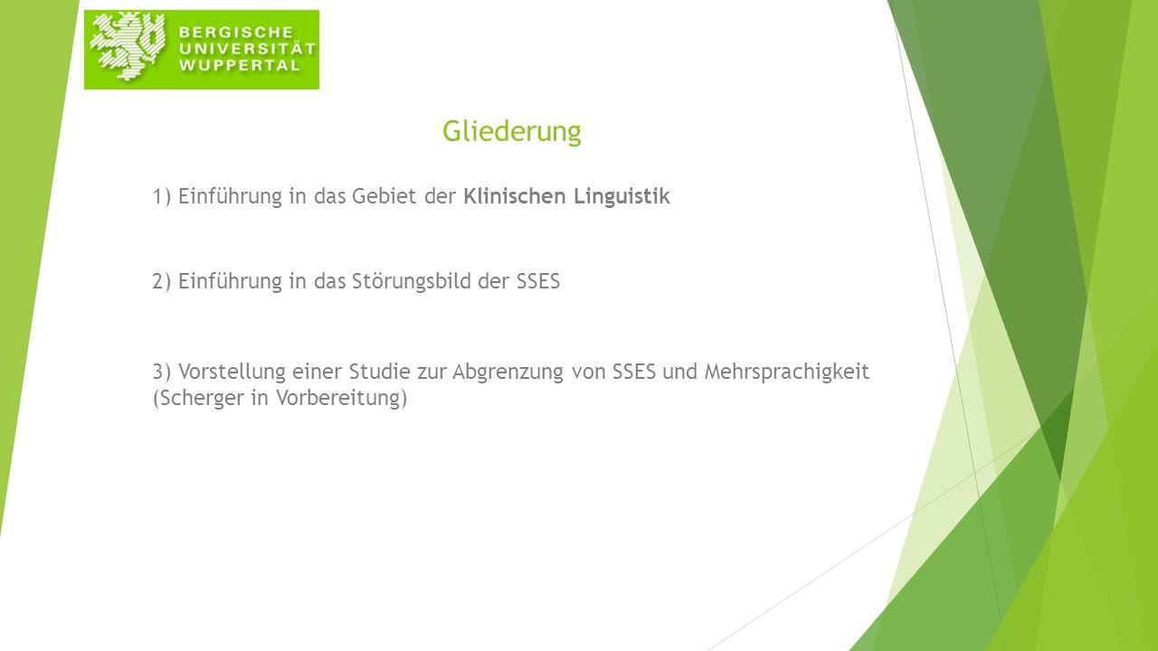 Gliederung 1) Einführung in das Gebiet der Klinischen Linguistik 2) Einführung in das Störungsbild der SSES 3) Vorstellung einer Studie zur Abgrenzung von SSES und Mehrsprachigkeit (Scherger in Vorbereitung)