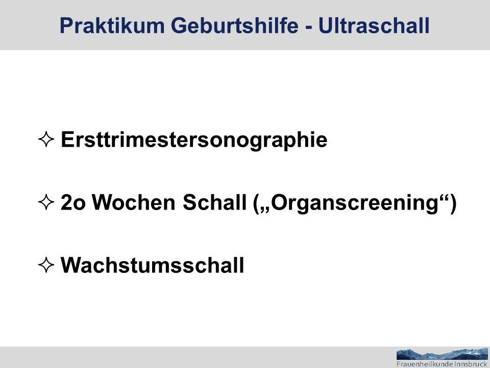""" Ersttrimestersonographie  2o Wochen Schall (""""Organscreening )  Wachstumsschall Praktikum Geburtshilfe - Ultraschall"""