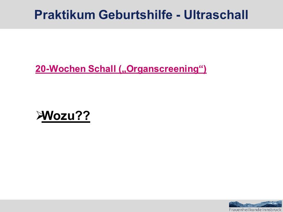 """20-Wochen Schall (""""Organscreening )  Wozu Praktikum Geburtshilfe - Ultraschall"""