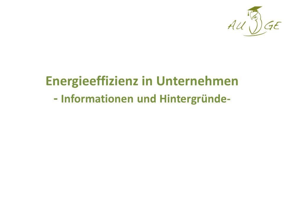 Energieeffizienz in Unternehmen - Informationen und Hintergründe-