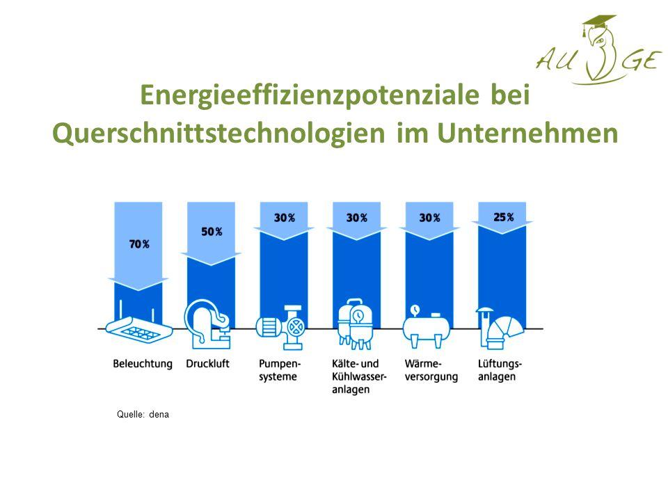 Energieeffizienzpotenziale bei Querschnittstechnologien im Unternehmen Quelle: dena