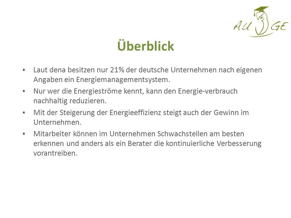 Laut dena besitzen nur 21% der deutsche Unternehmen nach eigenen Angaben ein Energiemanagementsystem. Nur wer die Energieströme kennt, kann den Energi