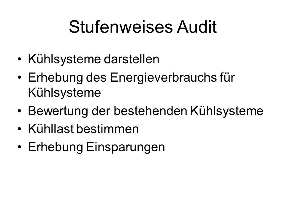 Stufenweises Audit Kühlsysteme darstellen Erhebung des Energieverbrauchs für Kühlsysteme Bewertung der bestehenden Kühlsysteme Kühllast bestimmen Erhebung Einsparungen