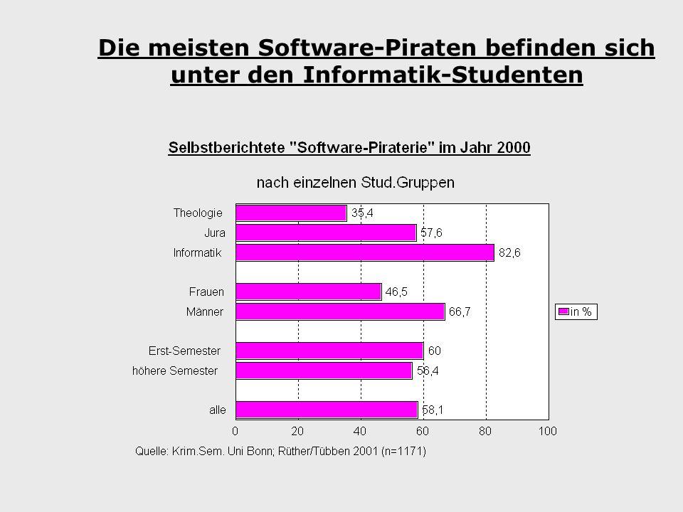 Die meisten Software-Piraten befinden sich unter den Informatik-Studenten