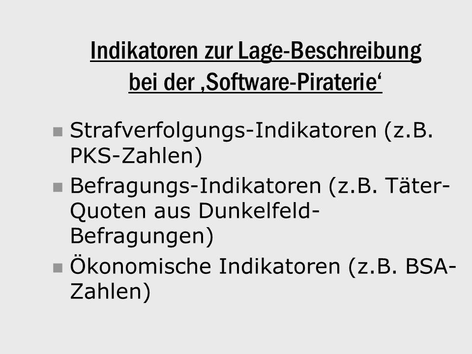 Indikatoren zur Lage-Beschreibung bei der 'Software-Piraterie' Strafverfolgungs-Indikatoren (z.B.