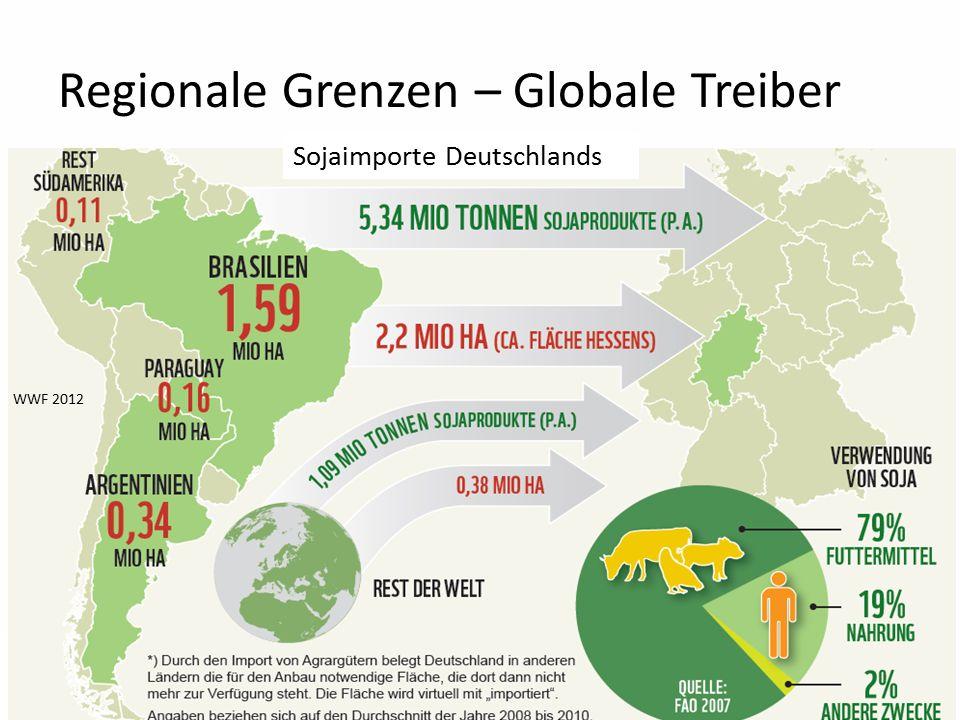 19 Regionale Grenzen – Globale Treiber WWF 2012 Sojaimporte Deutschlands