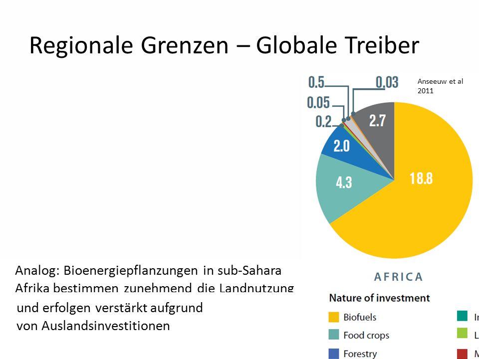 20 Regionale Grenzen – Globale Treiber Analog: Bioenergiepflanzungen in sub-Sahara Afrika bestimmen zunehmend die Landnutzung Anseeuw et al 2011 und erfolgen verstärkt aufgrund von Auslandsinvestitionen