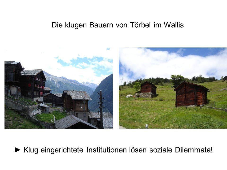 Die klugen Bauern von Törbel im Wallis ► Klug eingerichtete Institutionen lösen soziale Dilemmata!