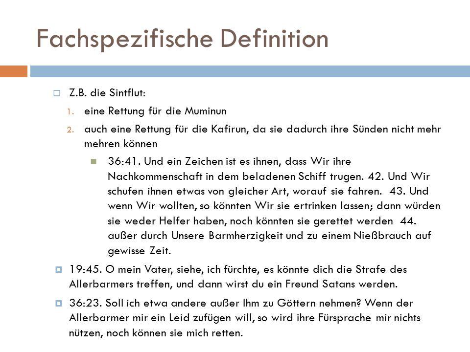 Fachspezifische Definition  Z.B. die Sintflut: 1.