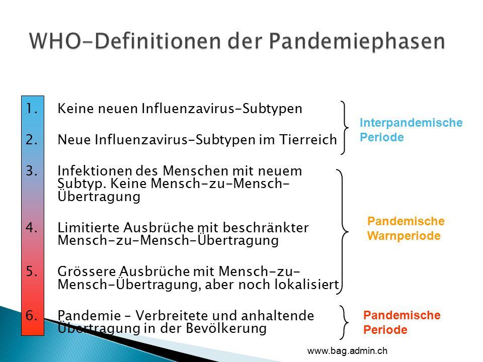 1.Keine neuen Influenzavirus-Subtypen 2.Neue Influenzavirus-Subtypen im Tierreich 3.Infektionen des Menschen mit neuem Subtyp.