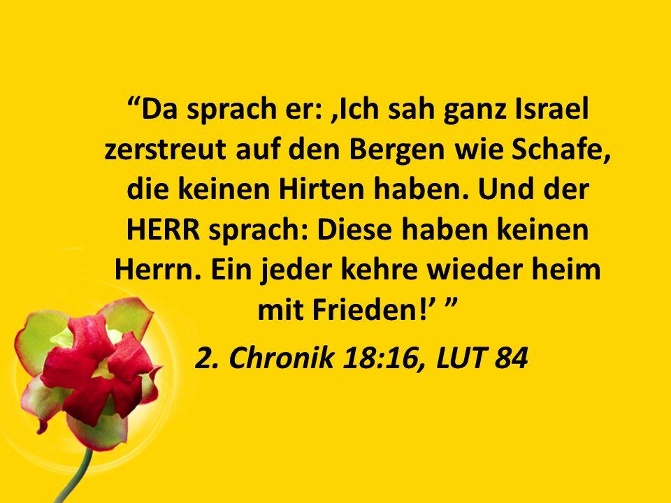 Da sprach er: 'Ich sah ganz Israel zerstreut auf den Bergen wie Schafe, die keinen Hirten haben.
