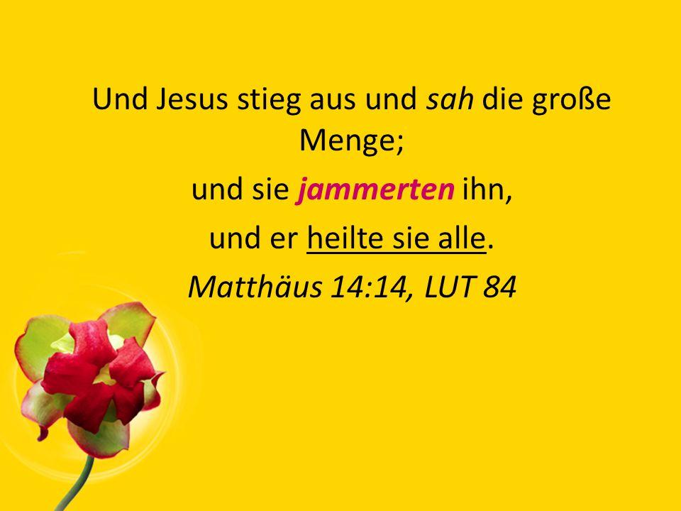 Und Jesus stieg aus und sah die große Menge; und sie jammerten ihn, und er heilte sie alle.