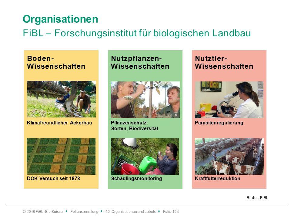 Nutztier- Wissenschaften Nutzpflanzen- Wissenschaften Boden- Wissenschaften Organisationen FiBL – Forschungsinstitut für biologischen Landbau Bilder: FiBL © 2016 FiBL, Bio Suisse Foliensammlung 10.