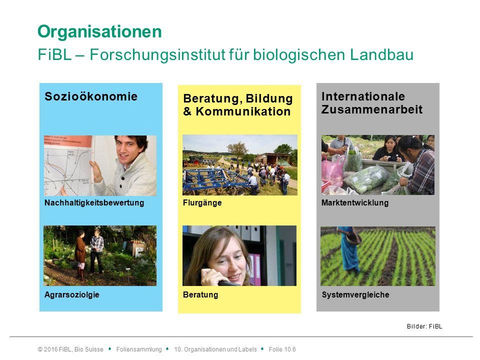 Internationale Zusammenarbeit Beratung, Bildung & Kommunikation Sozioökonomie Organisationen FiBL – Forschungsinstitut für biologischen Landbau Bilder: FiBL © 2016 FiBL, Bio Suisse Foliensammlung 10.