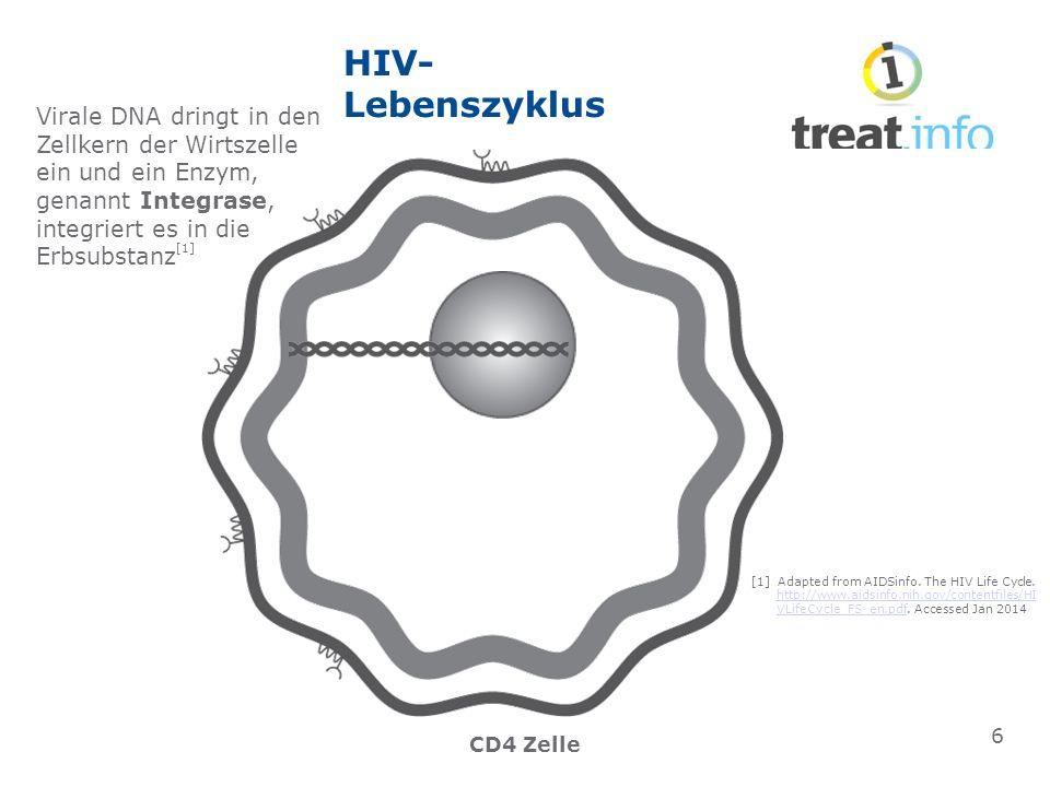 HIV- Lebenszyklus CD4 Zelle Virale DNA dringt in den Zellkern der Wirtszelle ein und ein Enzym, genannt Integrase, integriert es in die Erbsubstanz [1] 6 [1] Adapted from AIDSinfo.