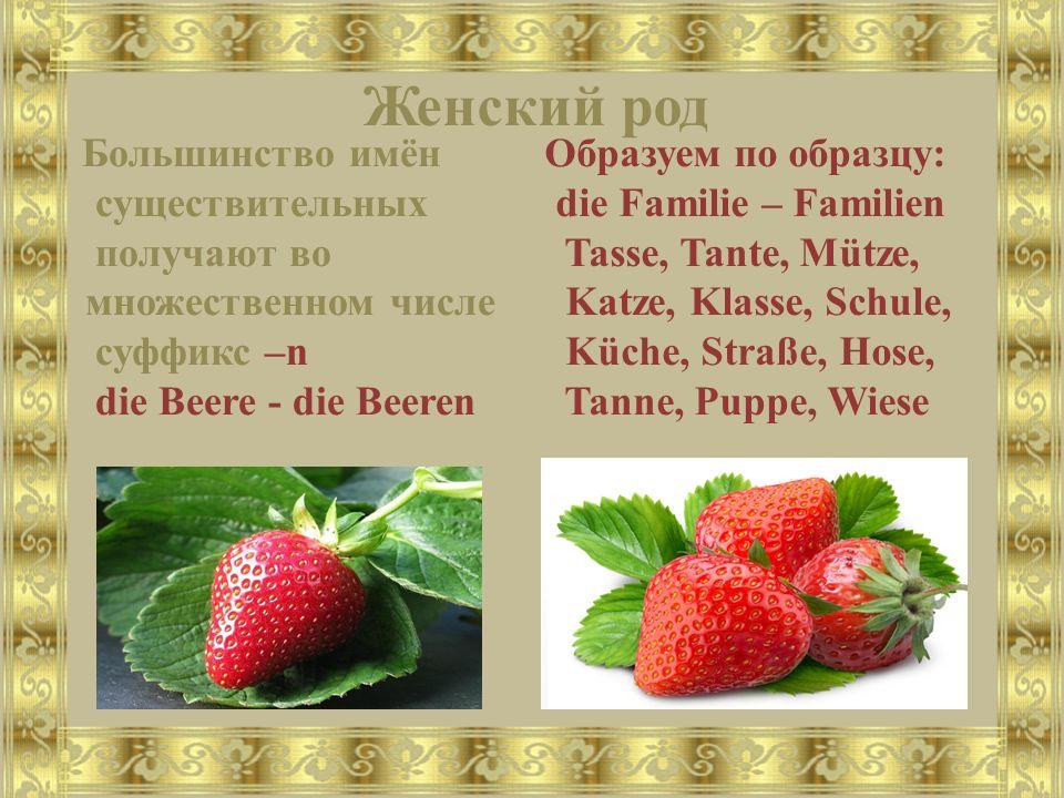 Женский род Большинство имён существительных получают во множественном числе суффикс –n die Beere - die Beeren Образуем по образцу: die Familie – Fami