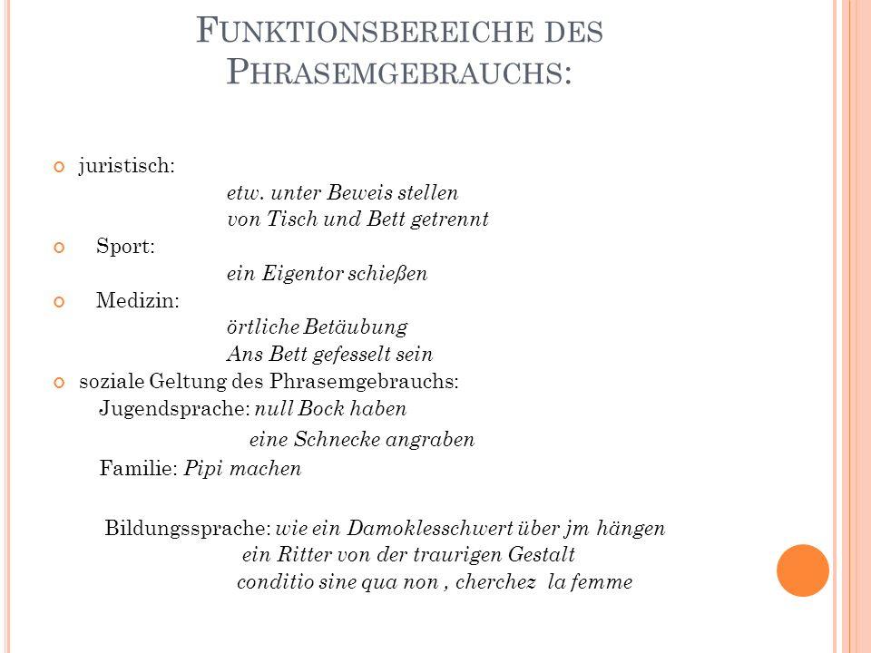 F UNKTIONSBEREICHE DES P HRASEMGEBRAUCHS : juristisch: etw.