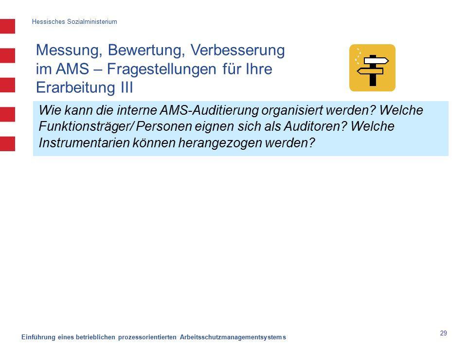 Hessisches Sozialministerium Einführung eines betrieblichen prozessorientierten Arbeitsschutzmanagementsystems 29 Wie kann die interne AMS-Auditierung organisiert werden.