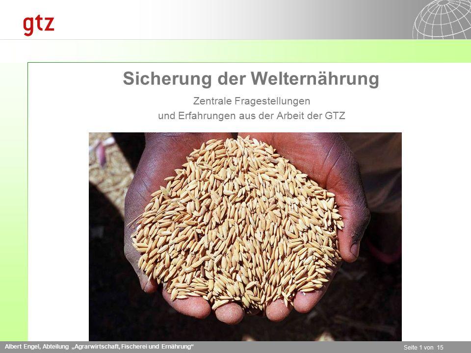 """Albert Engel, Abteilung """"Agrarwirtschaft, Fischerei und Ernährung Seite 1 von 15 Sicherung der Welternährung Zentrale Fragestellungen und Erfahrungen aus der Arbeit der GTZ"""