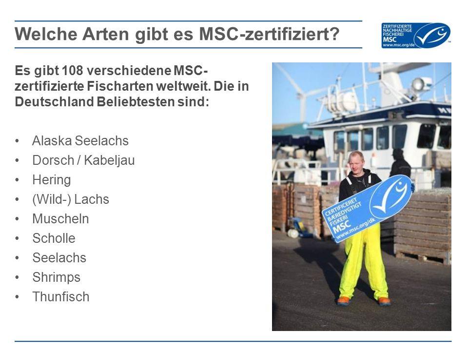Es gibt 108 verschiedene MSC- zertifizierte Fischarten weltweit. Die in Deutschland Beliebtesten sind: Alaska Seelachs Dorsch / Kabeljau Hering (Wild-