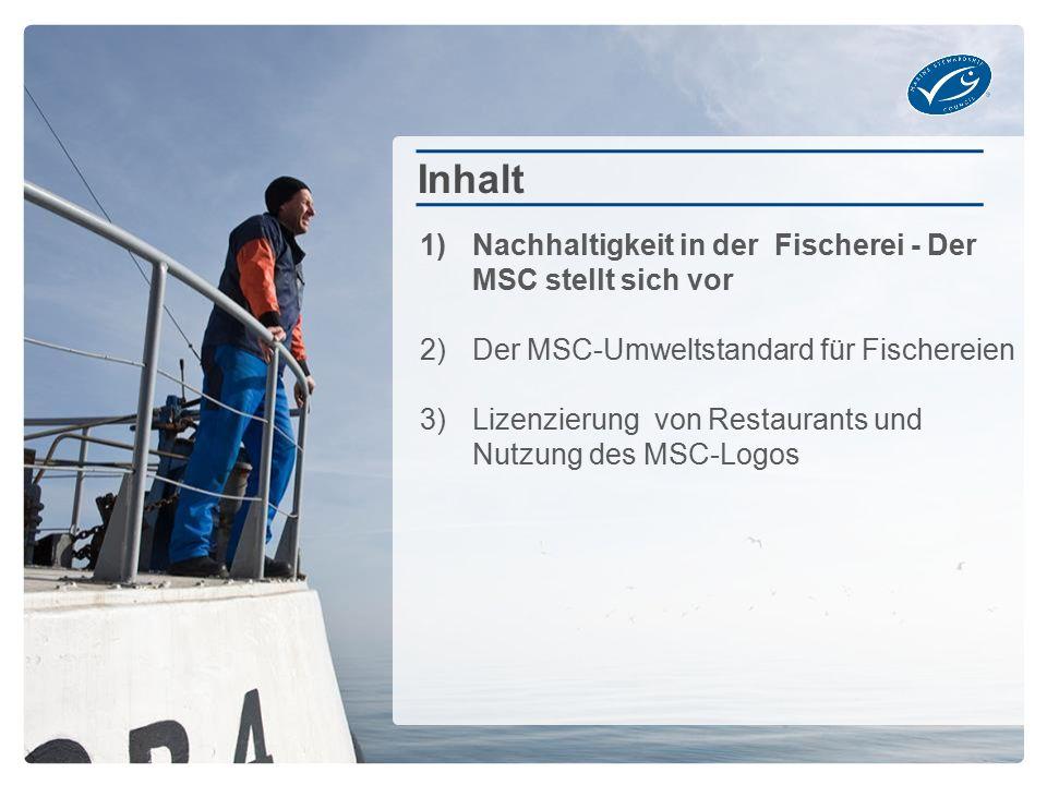 Weltweit sind knapp 2.700 Unternehmen MSC-zertifiziert Weltweit gibt es über 23.000 Produkte mit MSC-Logo, davon etwa: 5.700 in Deutschland, 1.300 in Österreich, 1.000 in der Schweiz Etwa 59% des in DE verkauften Fischs aus Wildfang ist MSC-zertifiziert Über 58% der deutschen Fisch essenden Verbraucher haben das blaue MSC-Logo schon einmal gesehen.