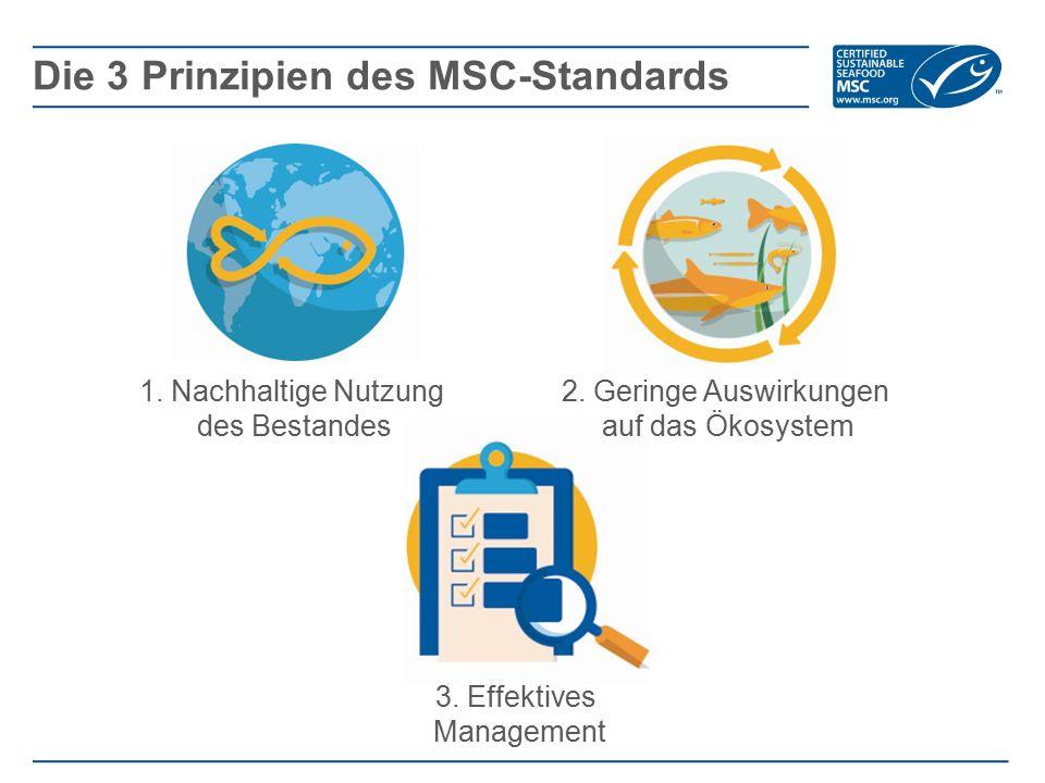 Die 3 Prinzipien des MSC-Standards 1. Nachhaltige Nutzung des Bestandes 2. Geringe Auswirkungen auf das Ökosystem 3. Effektives Management