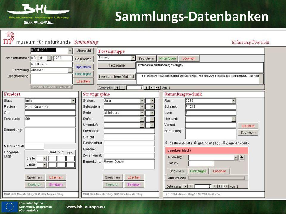 Sammlungs-Datenbanken