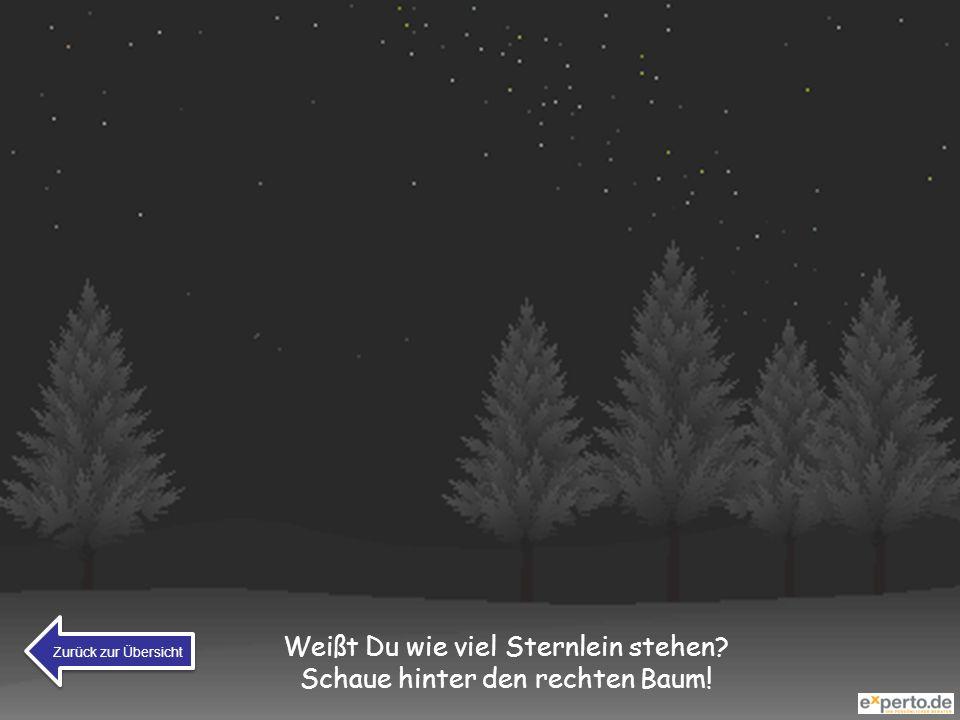 Weißt Du wie viel Sternlein stehen? Schaue hinter den rechten Baum! Zurück zur Übersicht