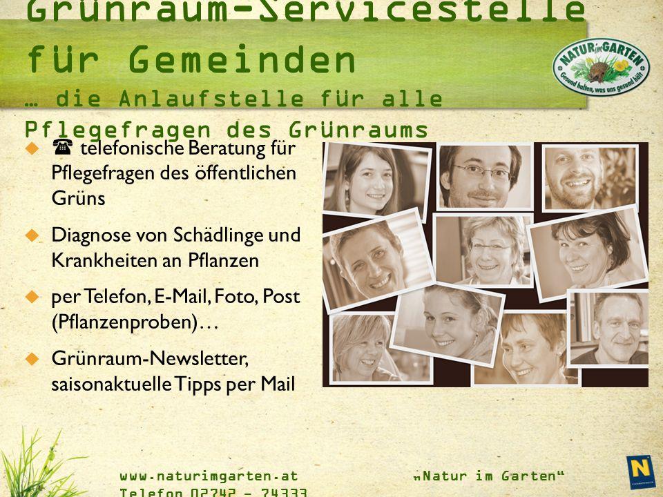 """www.naturimgarten.at """"Natur im Garten"""" Telefon 02742 - 74333   telefonische Beratung für Pflegefragen des öffentlichen Grüns  Diagnose von Schädlin"""
