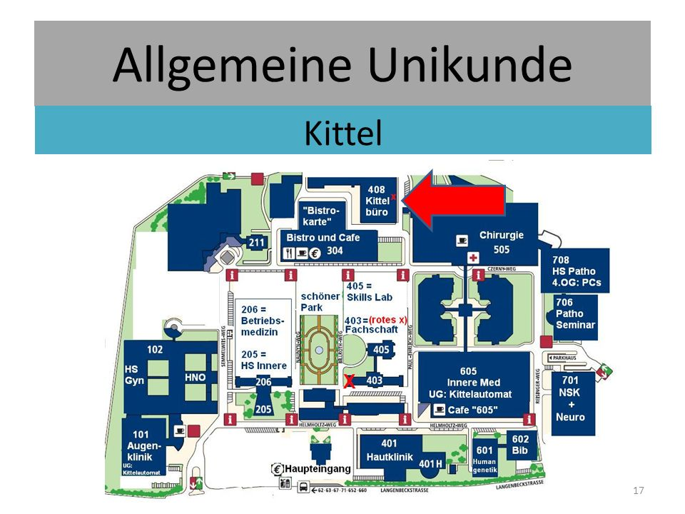 Allgemeine Unikunde Kittel 17