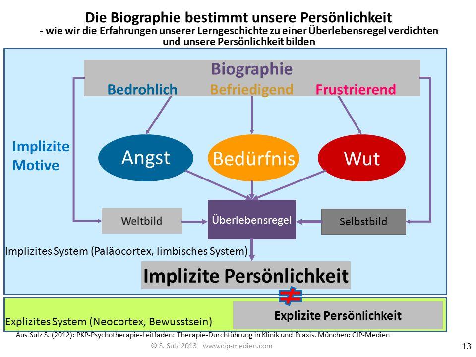 Beginnen wir mit den dysfunktionalen Schemata Ein Beispiel eines komplexen Schemas (emotional-motivational- kognitiv) ist die dysfunktionale Überleben