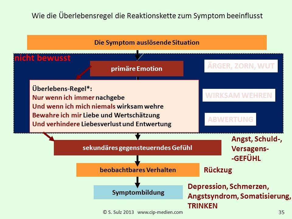Wie die Überlebensregel die Reaktionskette zum Symptom beeinflusst Woher kommt die Antizipation der negativen Folgen meines geplanten Verhaltens? Die
