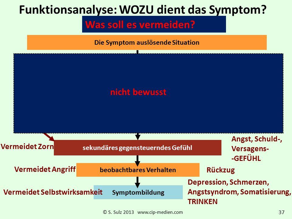 Situation – primäre Emotion – Überlebensregel – Antizipation der Folgen Die System-Funktion als Regel wird besser erfüllt, wenn zusätzlich der motivat