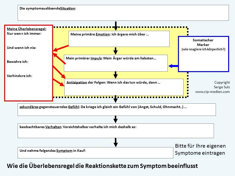 Funktionsanalyse: WOZU dient das Symptom? Wozu dient also das Symptom? Es dient der Vermeidung der primären Emotion und des primären Handlungsimpulses