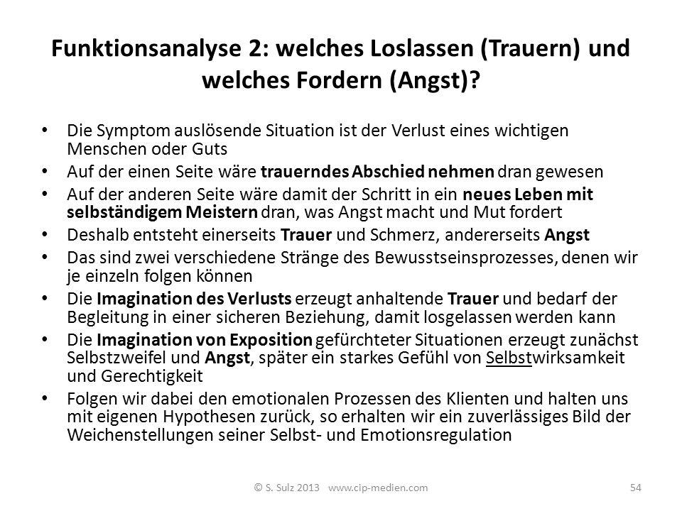 Funktionsanalyse 2: welches Loslassen (Trauern) und welches Fordern (Angst)? 53© S. Sulz 2013 www.cip-medien.com