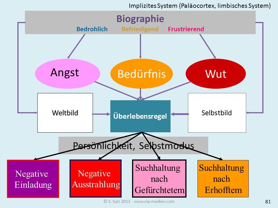 © S. Sulz 2013 www.cip-medien.com WutBedürfnis Angst Überlebensregel Selbstbild Persönlichkeit Selbstmodus Biographie Bedrohlich Befriedigend Frustrie