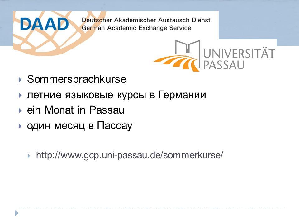  Sommersprachkurse  летние языковые курсы в Германии  ein Monat in Passau  один месяц в Пассау  http://www.gcp.uni-passau.de/sommerkurse/