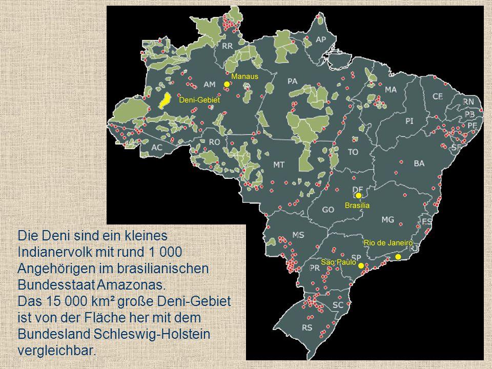 Die Deni sind ein kleines Indianervolk mit rund 1 000 Angehörigen im brasilianischen Bundesstaat Amazonas. Das 15 000 km² große Deni-Gebiet ist von de