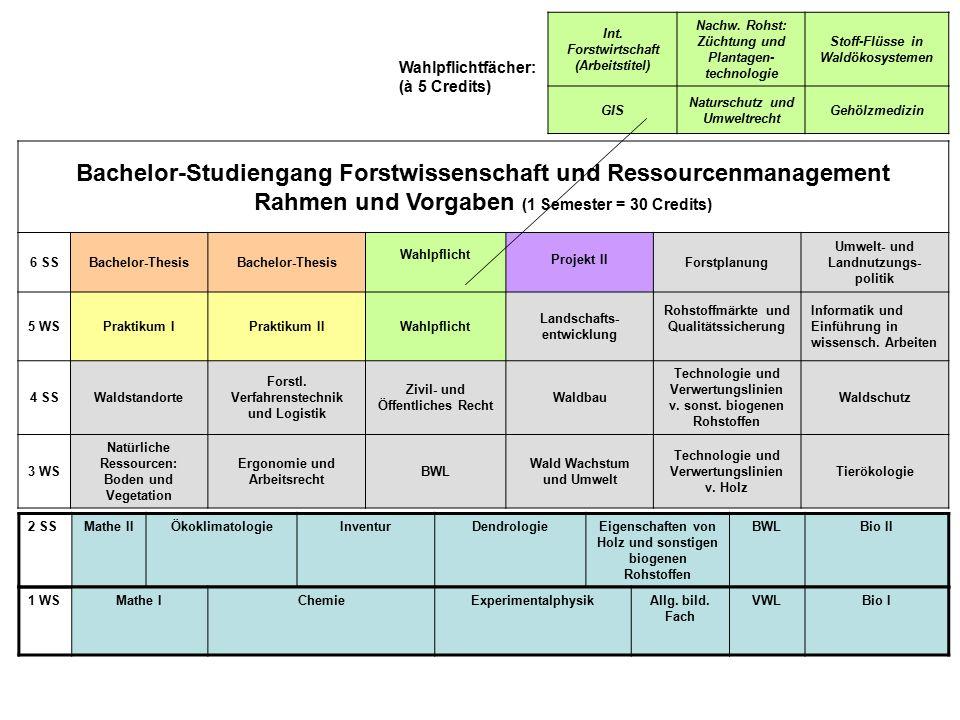 Bachelor-Studiengang Forstwissenschaft und Ressourcenmanagement Rahmen und Vorgaben (1 Semester = 30 Credits) 6 SSBachelor-Thesis Wahlpflicht Projekt