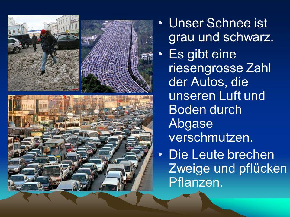 Unser Schnee ist grau und schwarz. Es gibt eine riesengrosse Zahl der Autos, die unseren Luft und Boden durch Abgase verschmutzen. Die Leute brechen Z