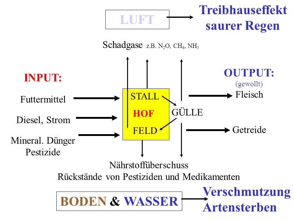 HOF STALL FELD INPUT: Futtermittel Diesel, Strom Mineral.