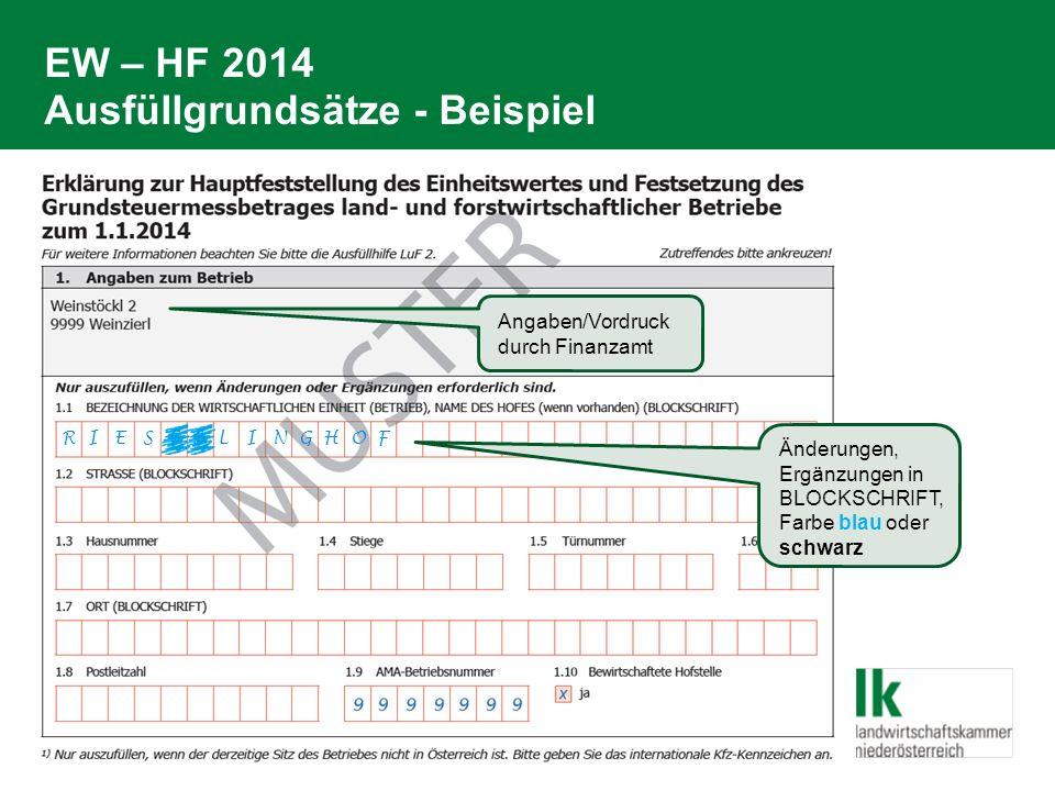 EW – HF 2014 Ausfüllgrundsätze - Beispiel R I E S S A L I N G H O F Angaben/Vordruck durch Finanzamt Änderungen, Ergänzungen in BLOCKSCHRIFT, Farbe blau oder schwarz