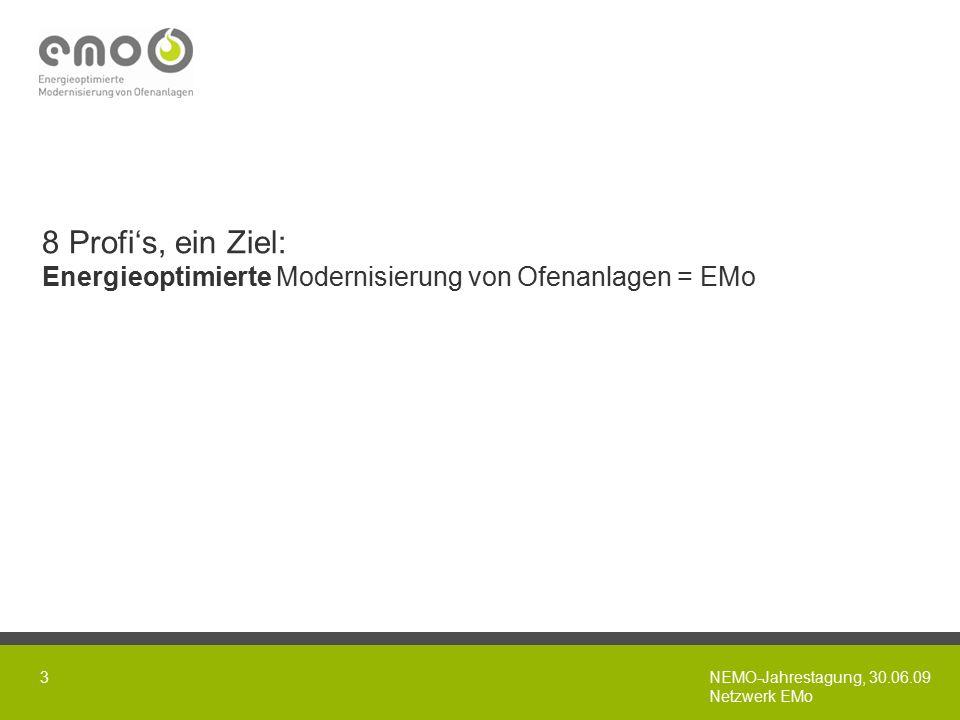 NEMO-Jahrestagung, 30.06.09 Netzwerk EMo 3 8 Profi's, ein Ziel: Energieoptimierte Modernisierung von Ofenanlagen = EMo